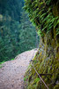 Eagle Creek Clifftop Trail, Columbia River Gorge