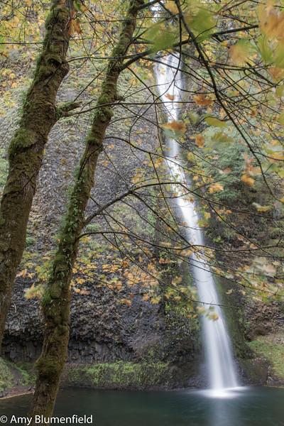 Multnohmah Falls