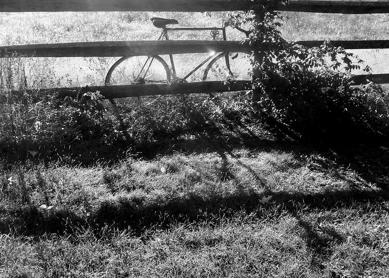 Bike Break