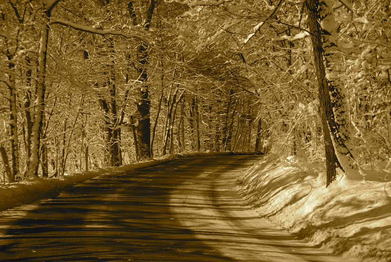 Back Roads II Sepia