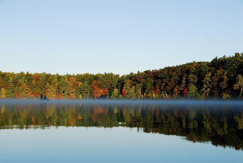 Fall Morning I