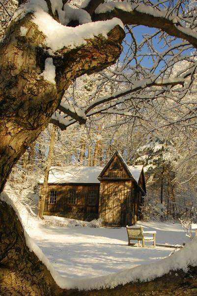 Alcott's School Of Philosophy, winter