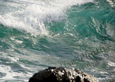 Ocean 0312 Sand Isle rw 2375