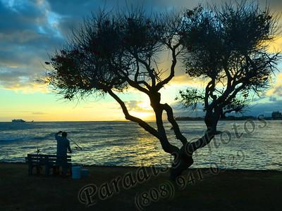 Fisherman tree sillouette MagIs 080211 989