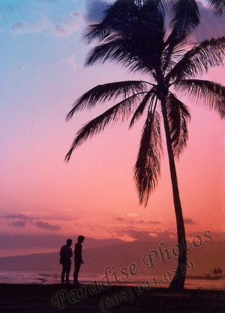 Magic Isle Palm & couple PatLam