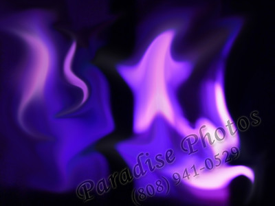 Purple pinkstar lights art  black window S