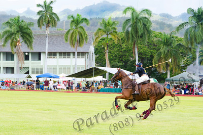 Hawaii Polo player & ball 0612 9277