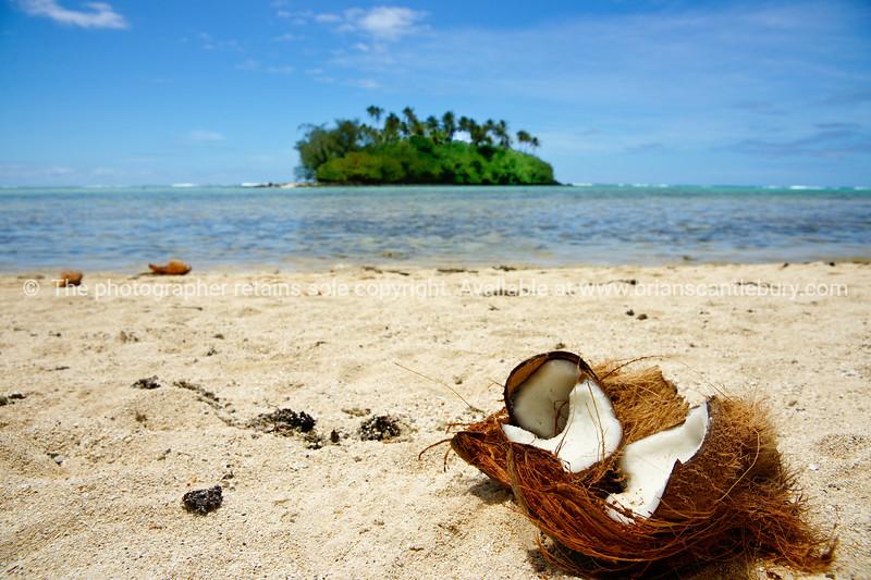 "Broken coconut lies on Muri Beach, Cook Islands. Please preview book ""Cook Islands"", above.  <a href=""http://www.blurb.com/b/1907535-cook-islands"">http://www.blurb.com/b/1907535-cook-islands</a>"