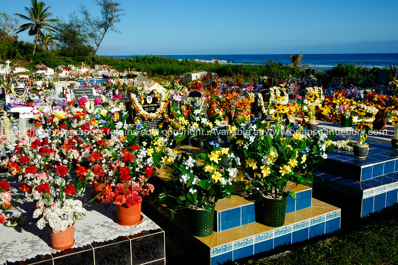 """Rarotonga cemetery, bestowed with flowers following the All Souls Day tributes. Cook Islands. Please preview book """"Cook Islands"""", above.  <a href=""""http://www.blurb.com/b/1907535-cook-islands"""">http://www.blurb.com/b/1907535-cook-islands</a>"""