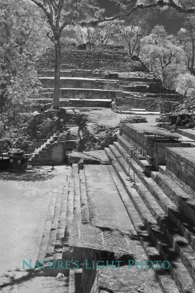 Copan Archeological Park, Honduras-6305