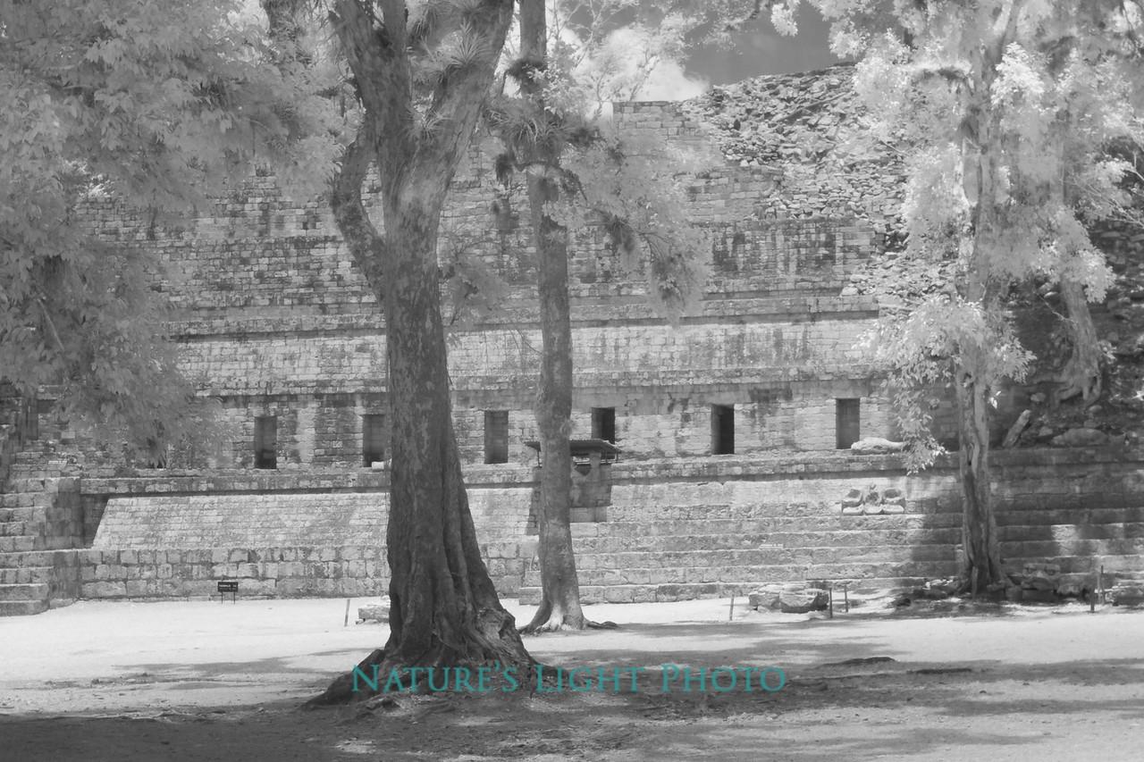 Ceremonial Court, Copan, Honduras-6333