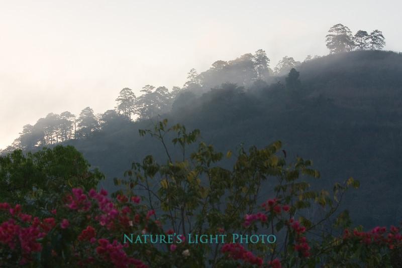 Copan Valley, Honduras-0132