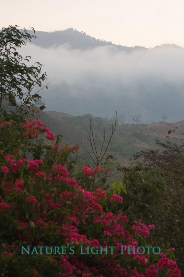 Copan Valley, Honduras-0125