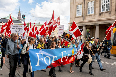 Copenhagen, Denmark, Street demonstration of the extreme right, Danish anti-immigration group MArching on Street