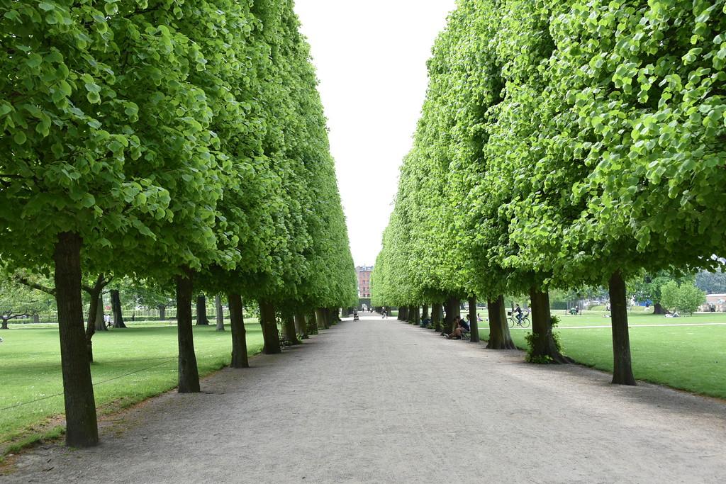 """Rosenborg """"King's Gardens"""""""
