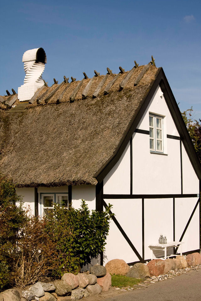 A real house with a real thatched roof.