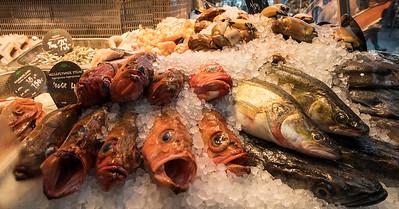Fish 07072