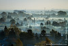 Early Morning Mist over Amager