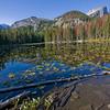 Nymph Lake @ 9700 Ft