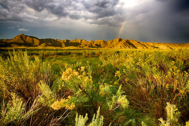 Sagebrush and Rainbow.