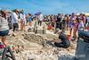 Port Aransas Sandfest