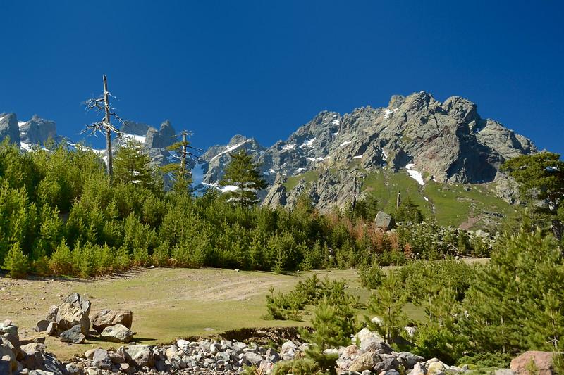 Corsica - Asco Vallei