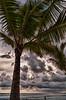 Walking the beach - Costa Rica