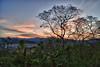 Dawn in the jungle - Costa Rica