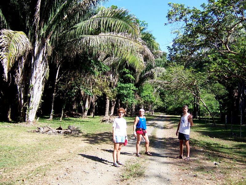 Road to hidden garden . Carate , Osa
