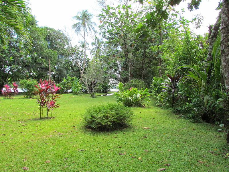 Grounds at Tortuga Lodge