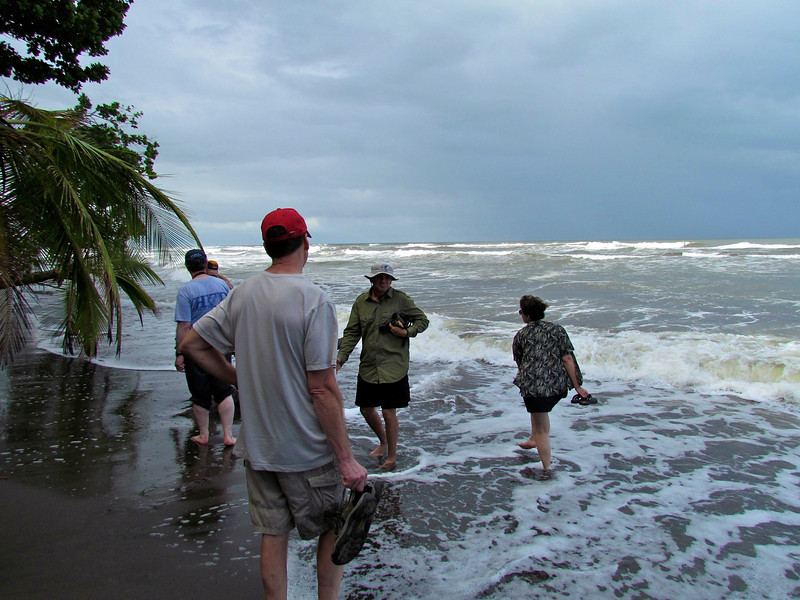 Running Out of Beach at High Tide