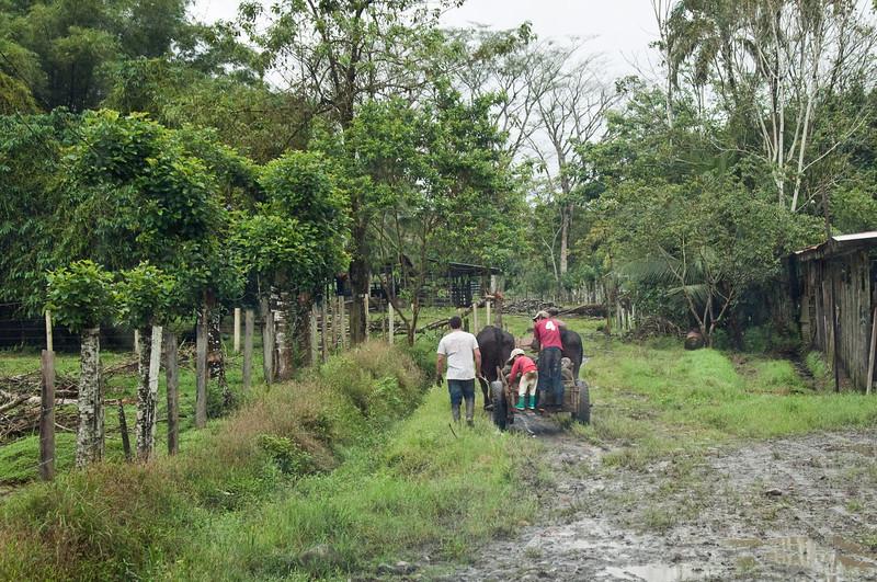 A local farm<br /> <br /> 293-DSC_3025