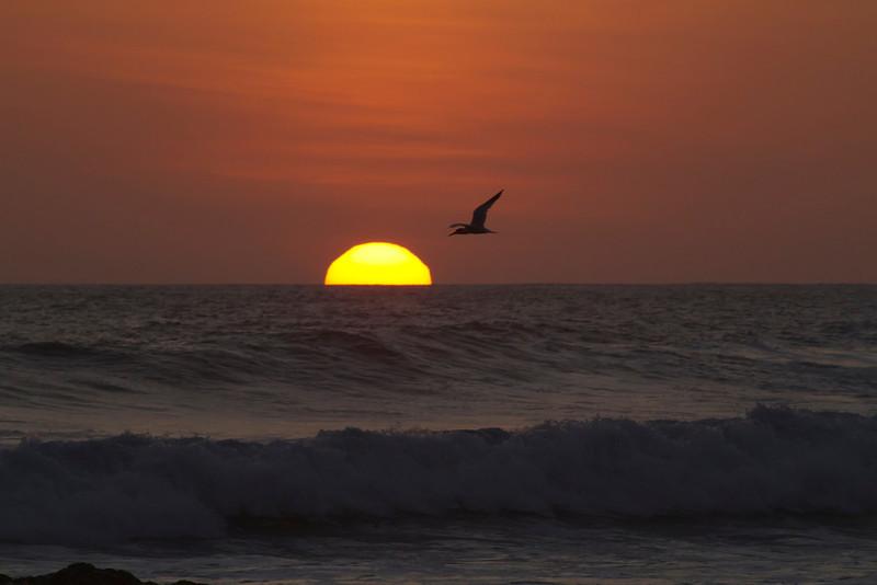 Sunset on Tamarindo beach