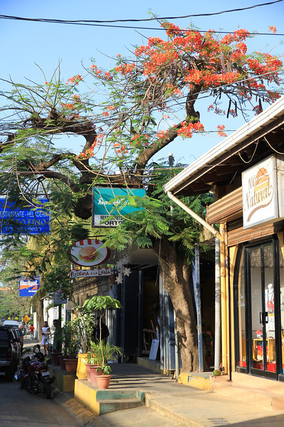 Shop in Tamarindo