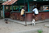 The local bar I had a beer in and the ever present dogs.<br /> <br /> 275-DSC_2942
