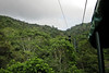 Pacific Rainforest Aerial Tram - I rode this up and back and got the previous 10 shots<br /> <br /> 234-IMG_9110