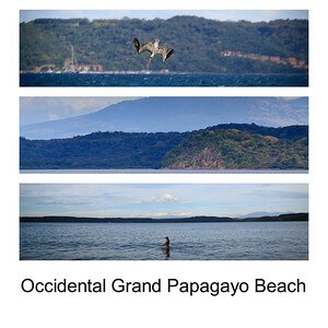 Occidental Grand Papagayo Beach