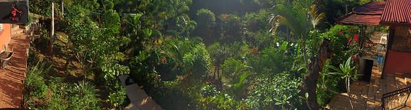 Panorama  of Dennis' Garden