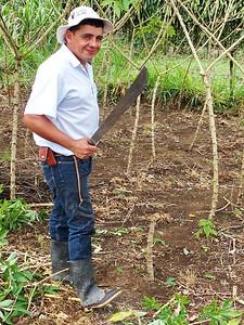 Juan Batista explains the harvesting of cassava at the organic farm