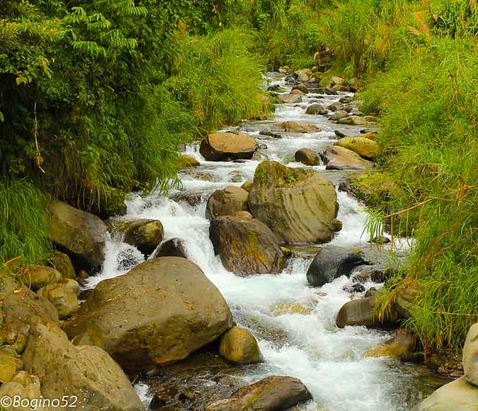 A stream in Orosi Valley, CR.