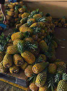 Piñas (pineapples) $1 each at the Feria