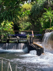 Tabacon's Hot Springs
