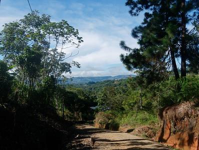 Birding Road