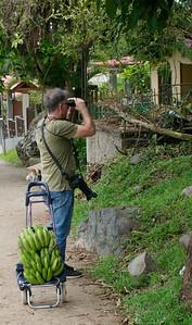 birding and getting bananas for feeder