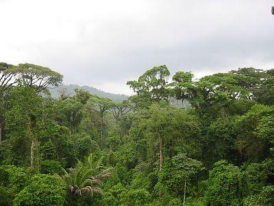 Costa Rica April 2003