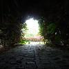Un túnel de vegetación, jardín del Hotel Bougainvillea, San José, CR.