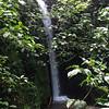 Rain forest waterfall, Sky Limit Experience, La Fortuna. July, 2015