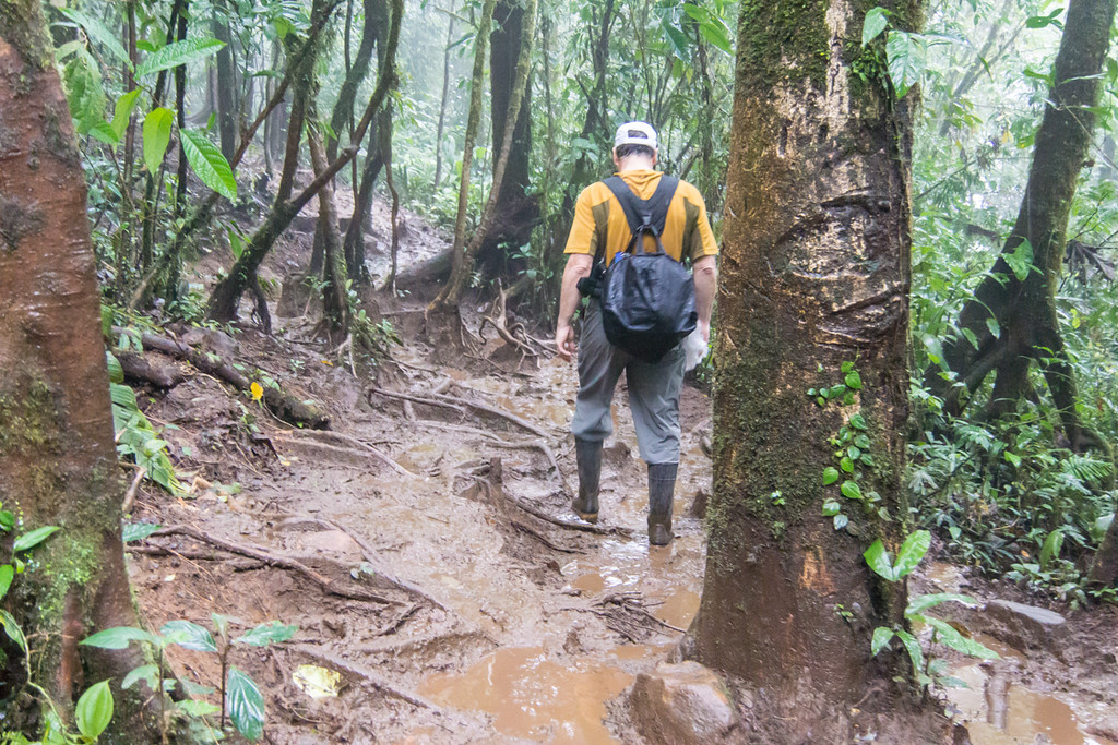 We went for a four hour hike through the forest. It rained hard most of the time, so much so that we rented galoshes to get through the mud.