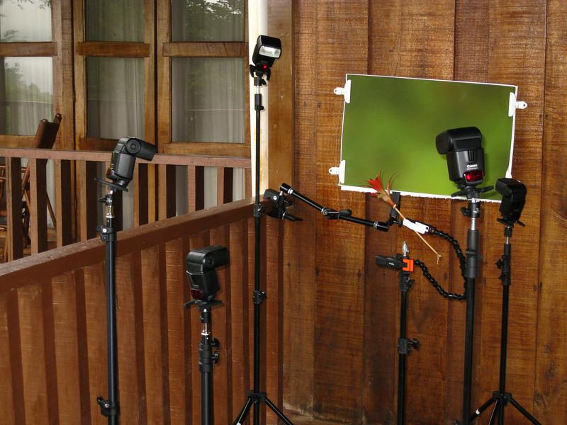 Multiflash setup for hummingbird photography,  Rancho Naturalista, Costa Rica.