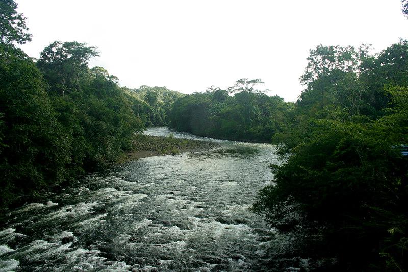 View from bridge over the Sarapiqui River, Sarapiqui, Costa Rica